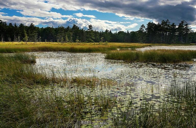 Acadia National Park, Mount Desert Island, Maine, US