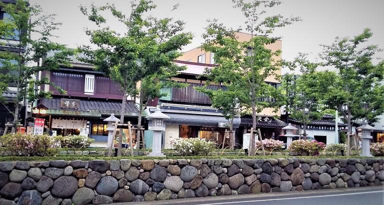 A tree-lined walkway past shops in Kamakura