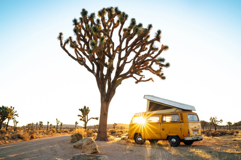 'Van Life' highlights the amazing views life on the road provides