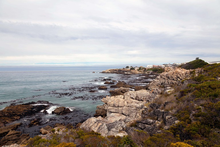 View over the cliffs to Walker Bay, Hermanus, South Africa