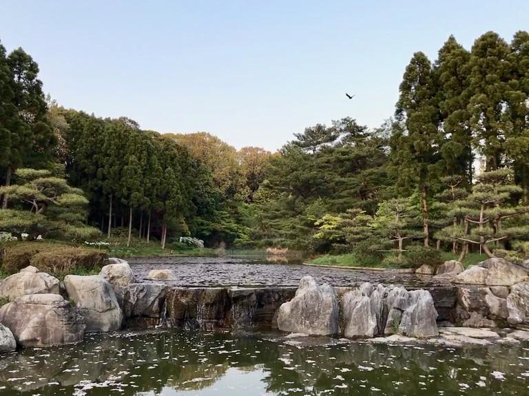 japanese-garden_tsurumi-ryokuchi_osaka