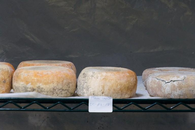 history_of_cheese_mistaka_Amman