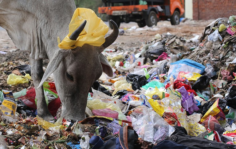 Dumping of plastic and untreated waste is one of the biggest problems facing India's major cities such as Mumbai