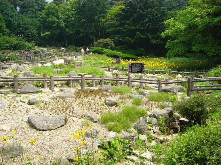 Rokko_alpine_botanical_garden