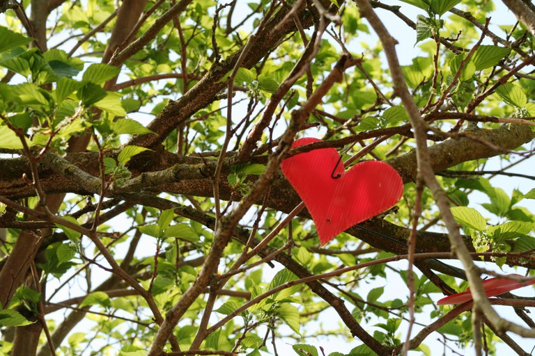 Jardin des amoureux, c?ur