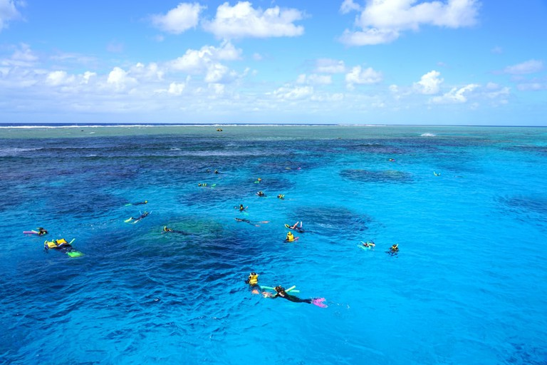 Tourists snorkeling in the Coral Sea on the Great Barrier Reef near the Agincourt Reef in Far North Queensland, Australia