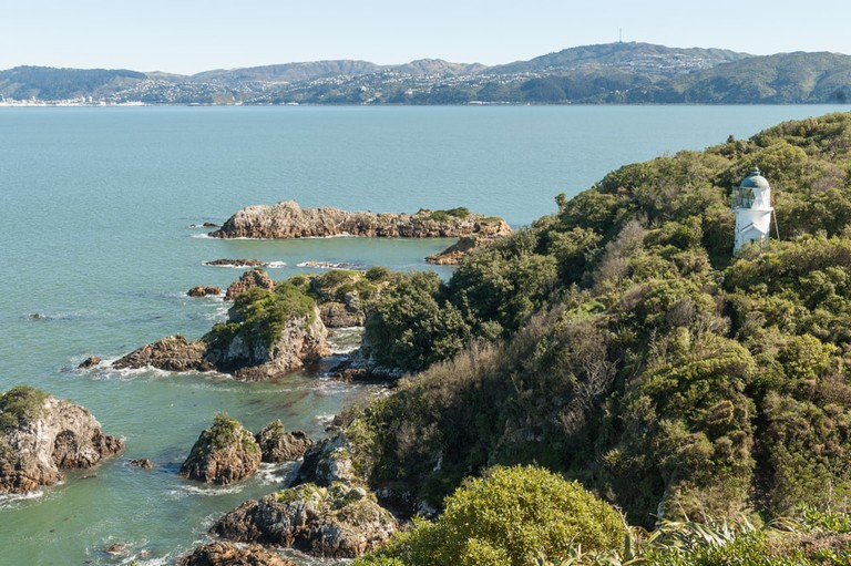 The coast and lighthouse on Matiu/Somes Island in Wellington Harbour, New Zealand