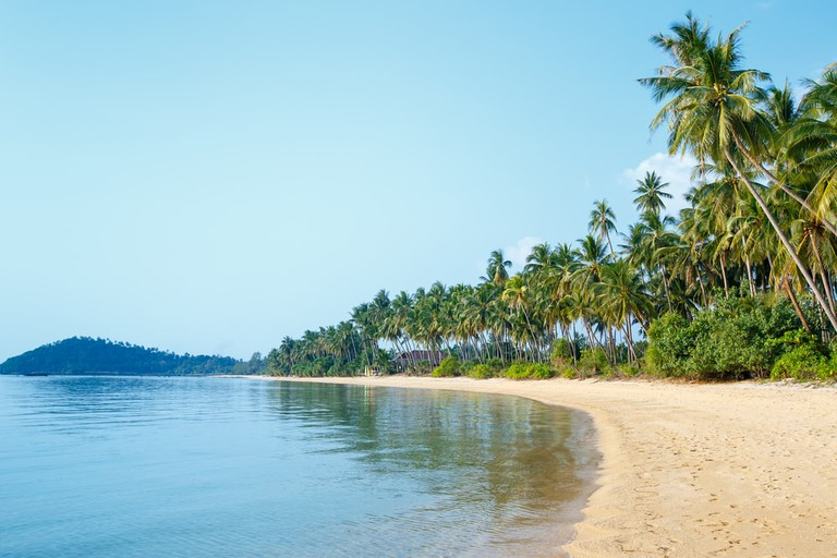 Tropical beach and coconut palms in Koh Samui, Thailand