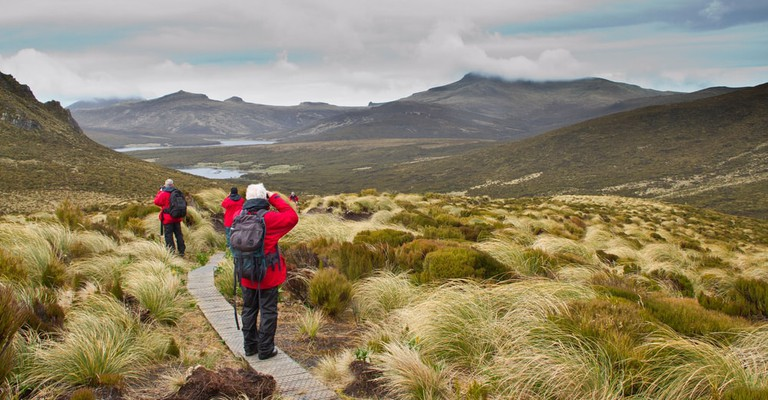 Walkers trekking across Campbell Island, Sub-antarctic Islands, New Zealand