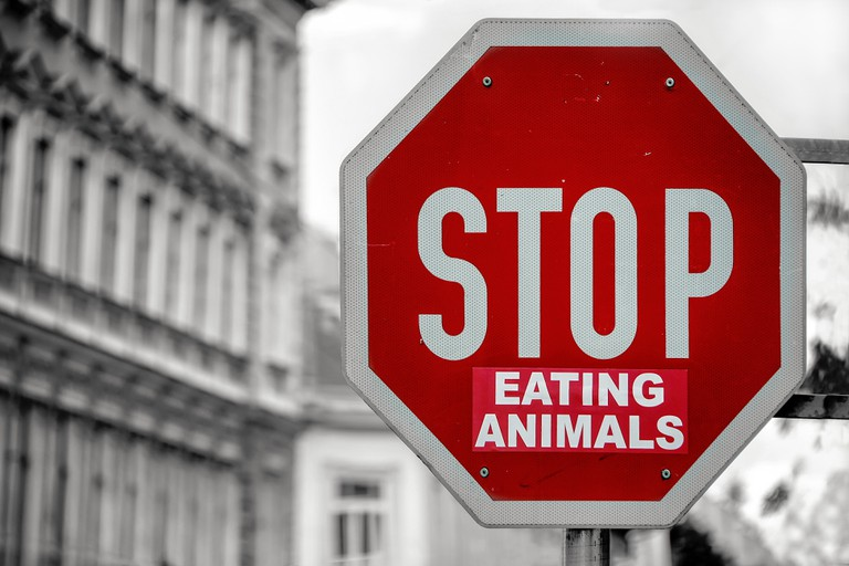 Vegans are on the offensive in France | © Simon Matzinger / Unsplash