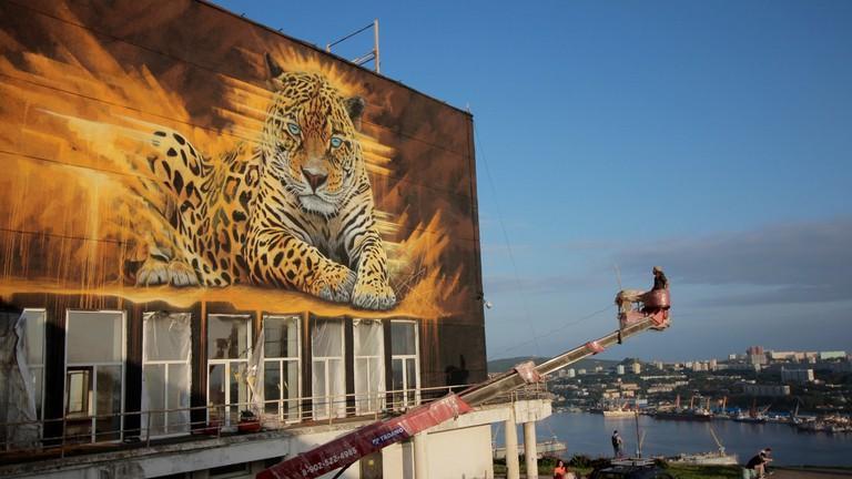 Amur Leopard, Vladivostok, Russia