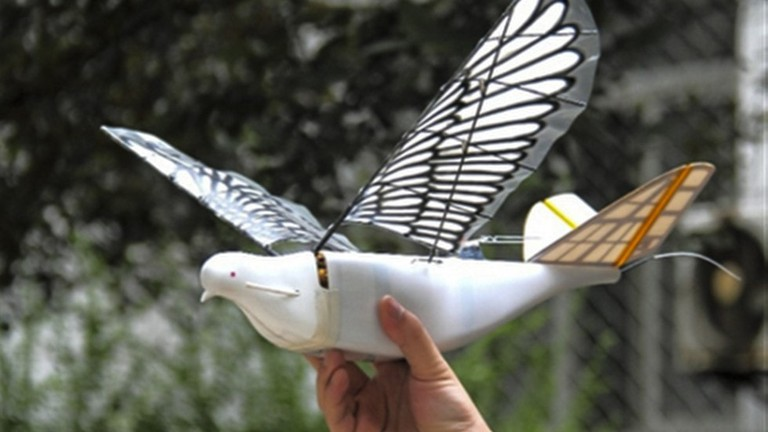 Spy Bird China