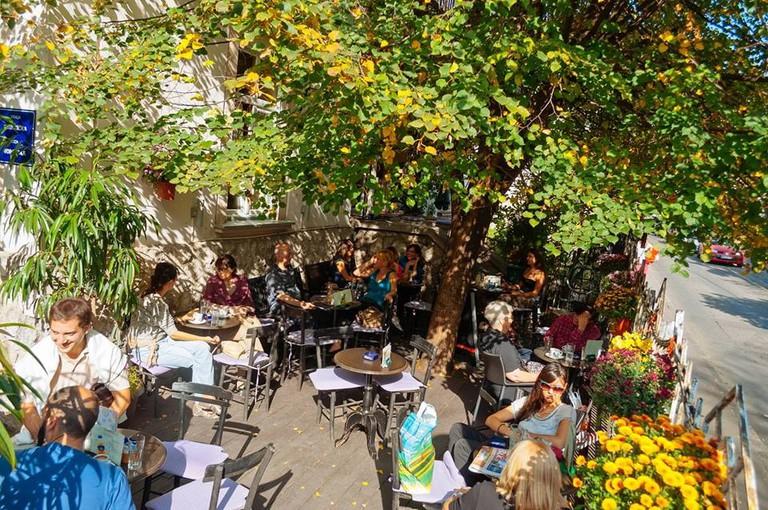 The splendid garden at Cafe Priča