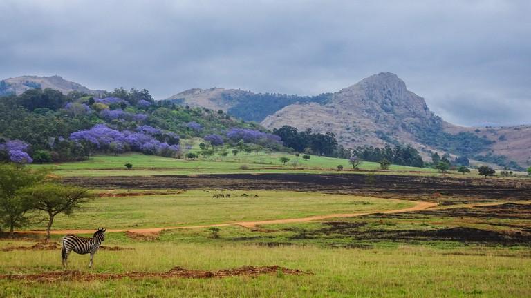 Mantenga Nature Reserve in Swaziland