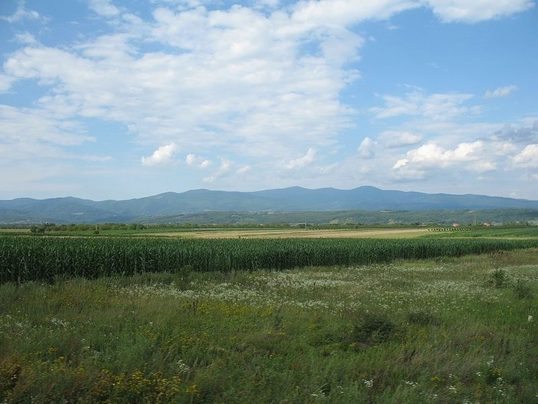 The green expanse of Jastrebac