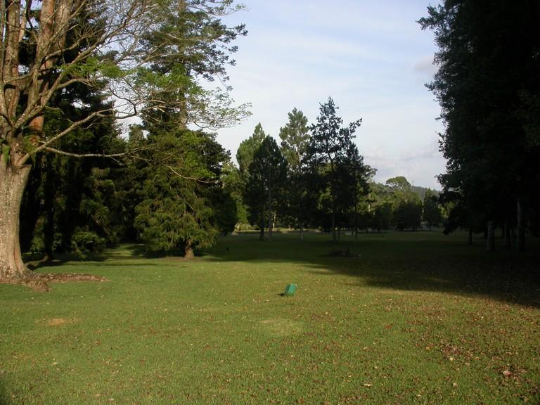The Botanical Gardens of Bedugul in Bali.