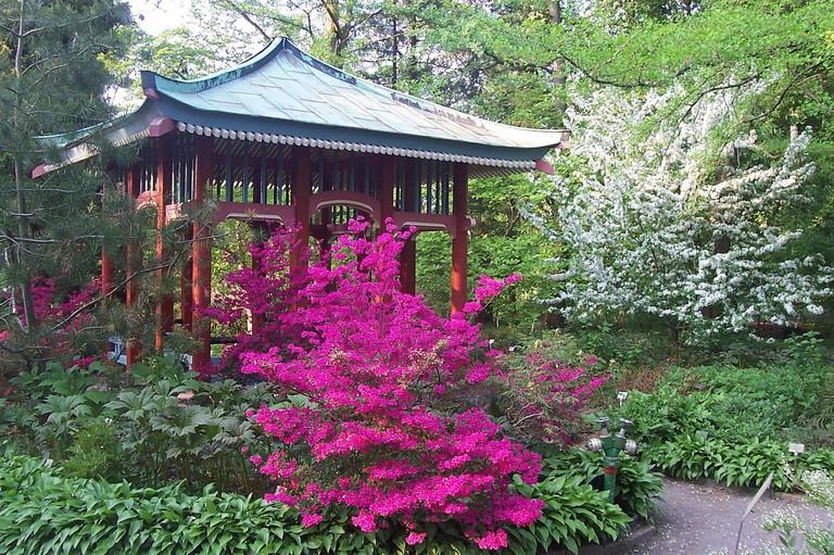 botanical-garden-584202_1280