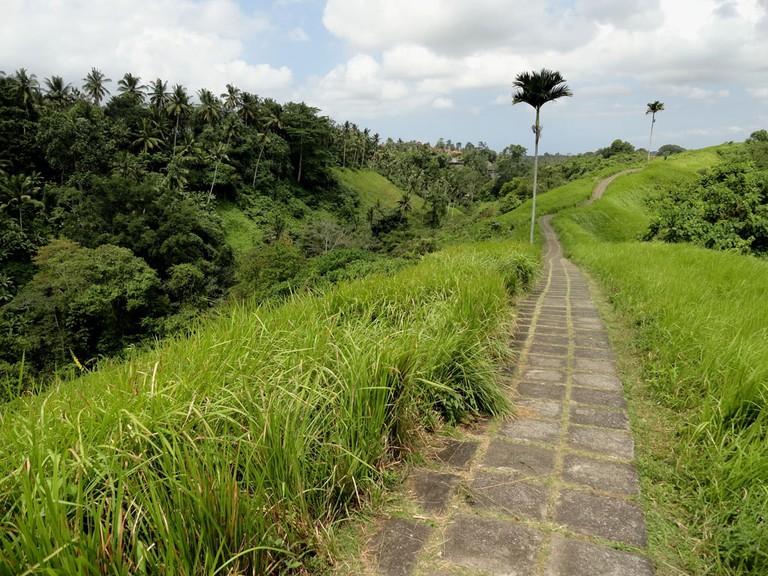 Campuhan ridge walk in Ubud.