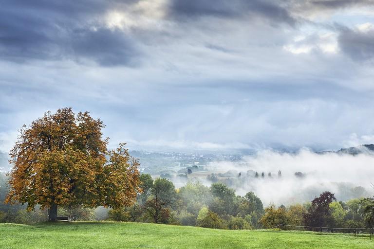 fog-2807294_1280