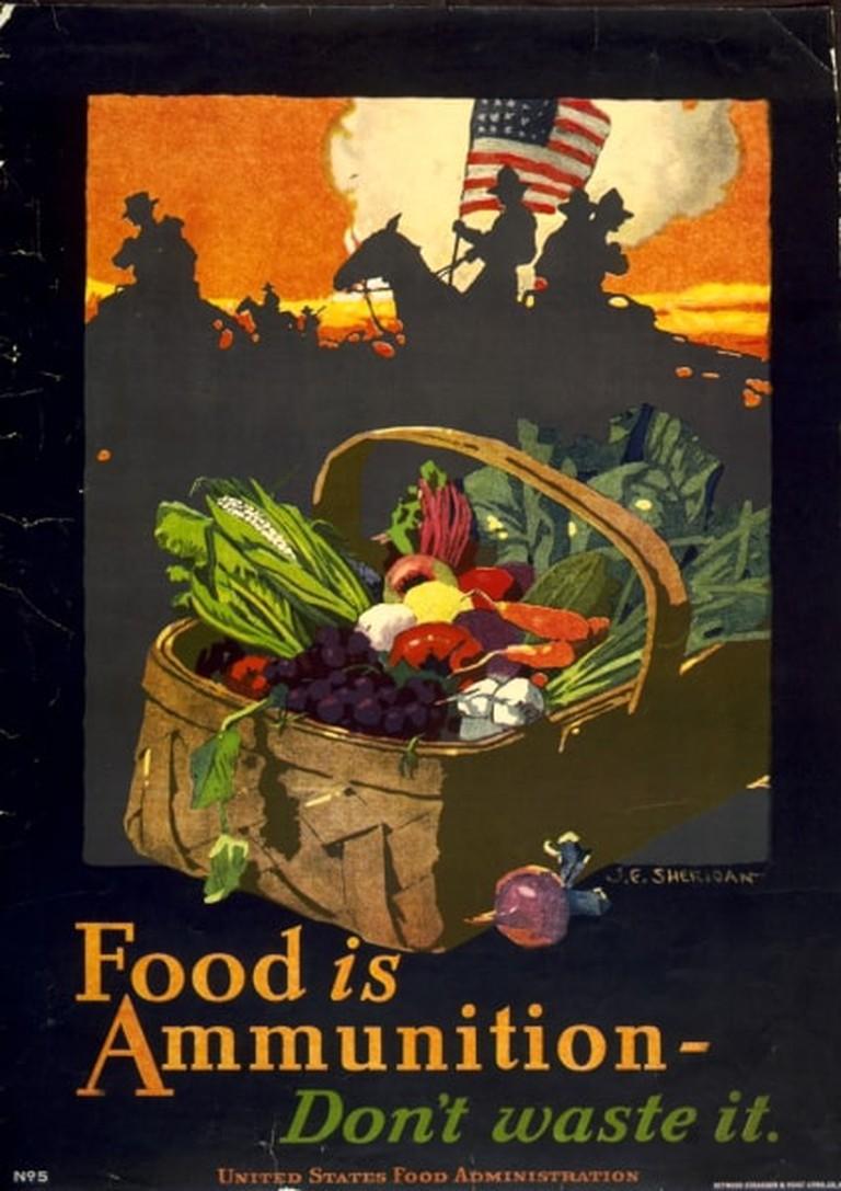 John_E_Sheridan_WWI_US_Food_is_Ammunition_Dont_Waste_it