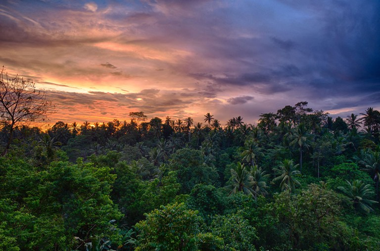 Sunset over the Balinese jungle