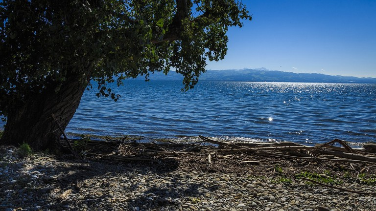 lake-constance-2776264_1280