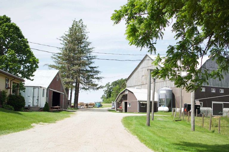 The Old Order Mennonite Village Minutes Away From Ontario's Tech Capital