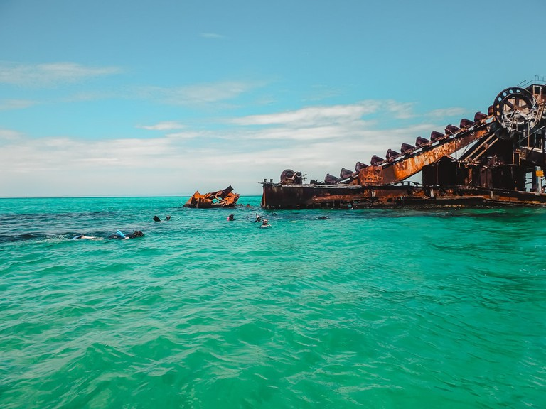 Snorkelling the Tangalooma Wrecks off Moreton Island