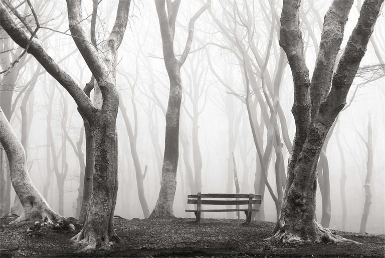 A Misty View monochrome