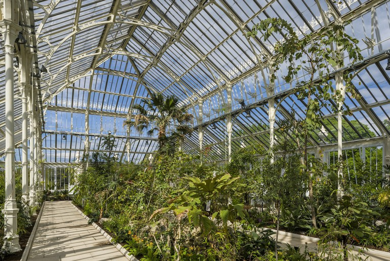 RBG.TH - Temperate House, Kew completion May 2018 - (c) Gareth Gardner 2 (2)