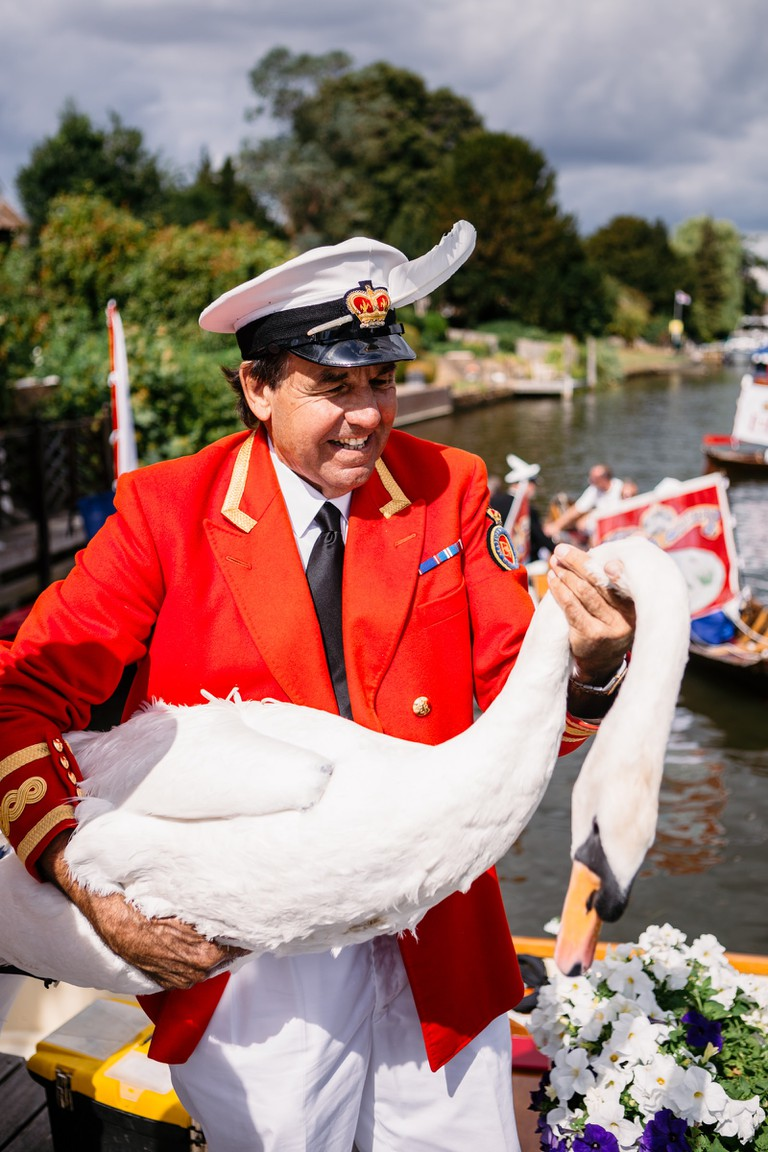 The swan upping is led by David Barber