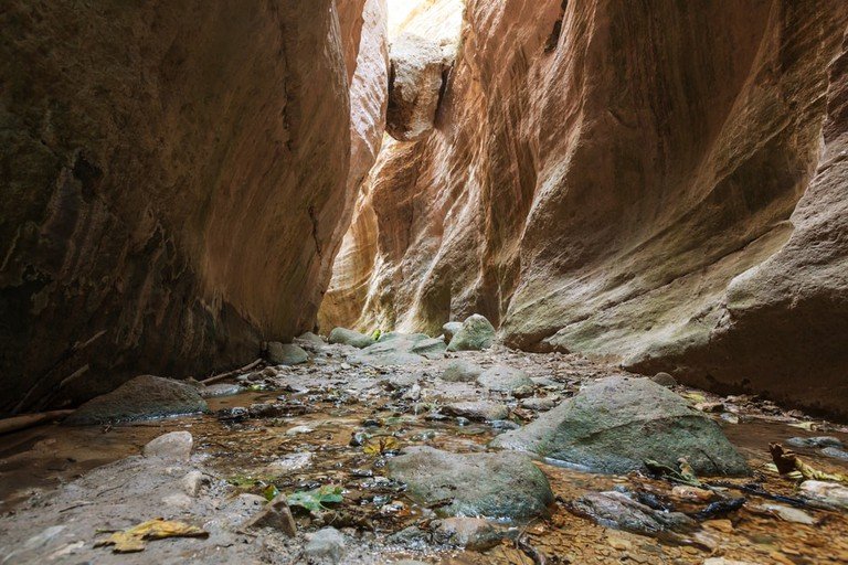 Explore nature's wonders at Avakas Gorge