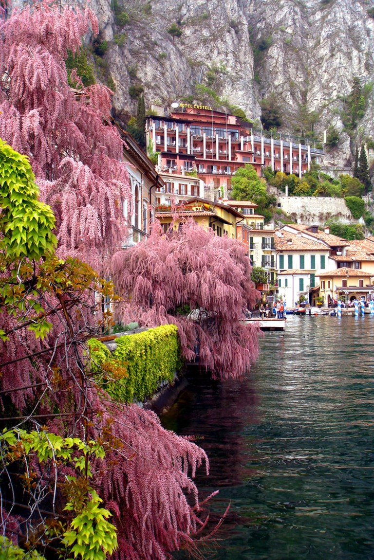 Blushing nature on the banks of the small town Limone Sul Garda, in the Lombardy region of Lake Garda