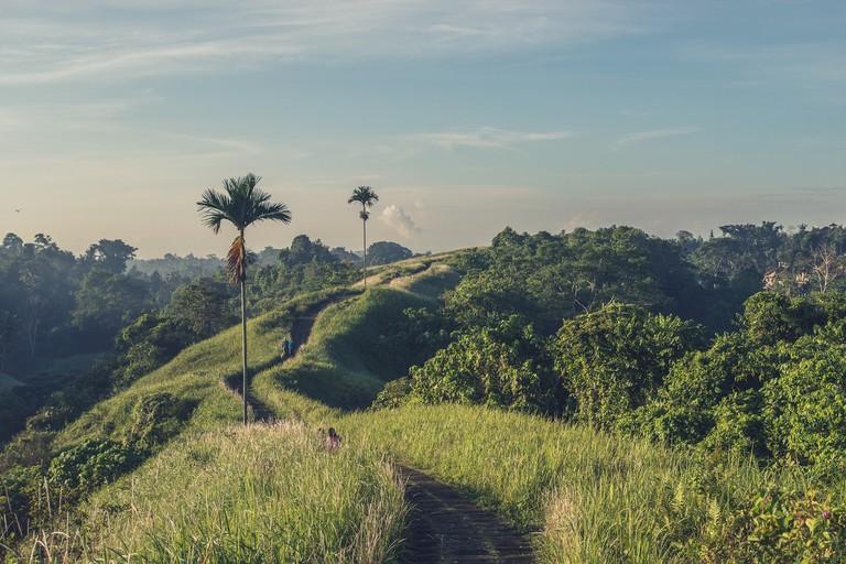 Camphuan ridge walk in Ubud, Bali.