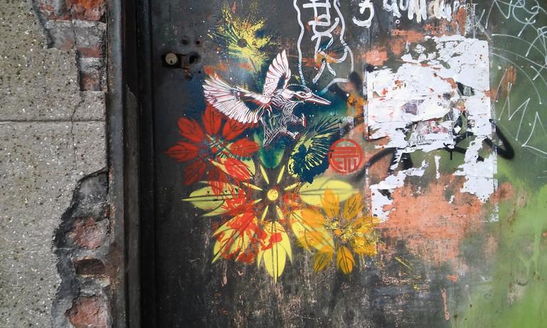 STeW bird street art