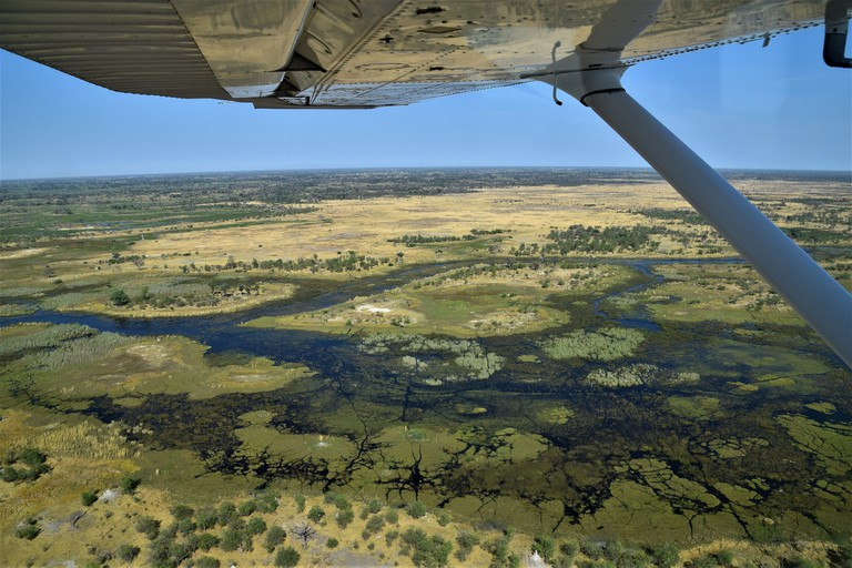 Scenic flight over the Okavango Delta