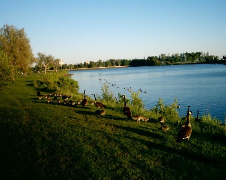 Boulevard_Lake_Thunder_Bay_Ontario