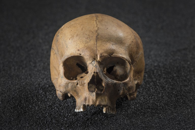 Four to five skulls of men showing signs of violent death © Museum of London