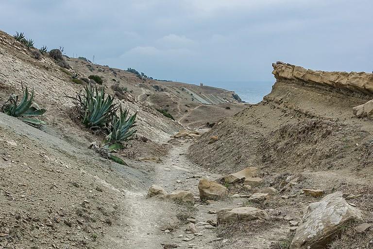 Tarifa_path_to_Algeciras-4131