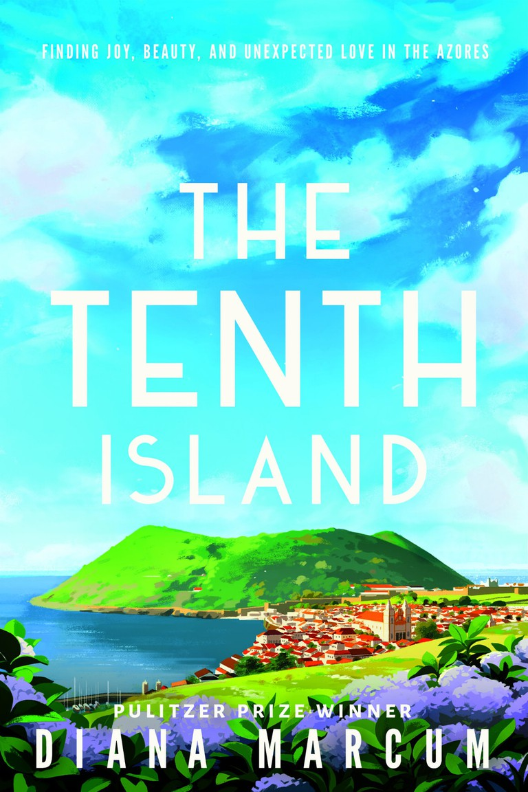 THE TENTH ISLAND cover