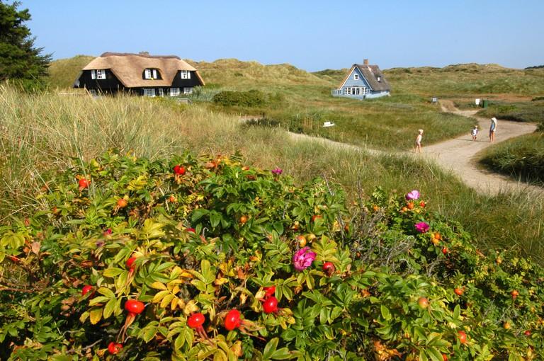 Feriehuse _Henne strand_Denmark_West Jutland