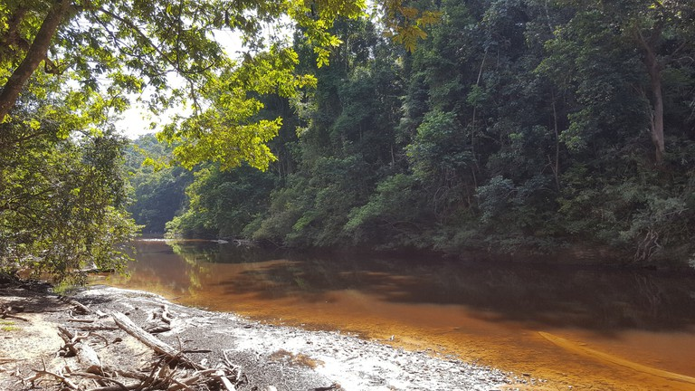 guide to taman negara malaysia