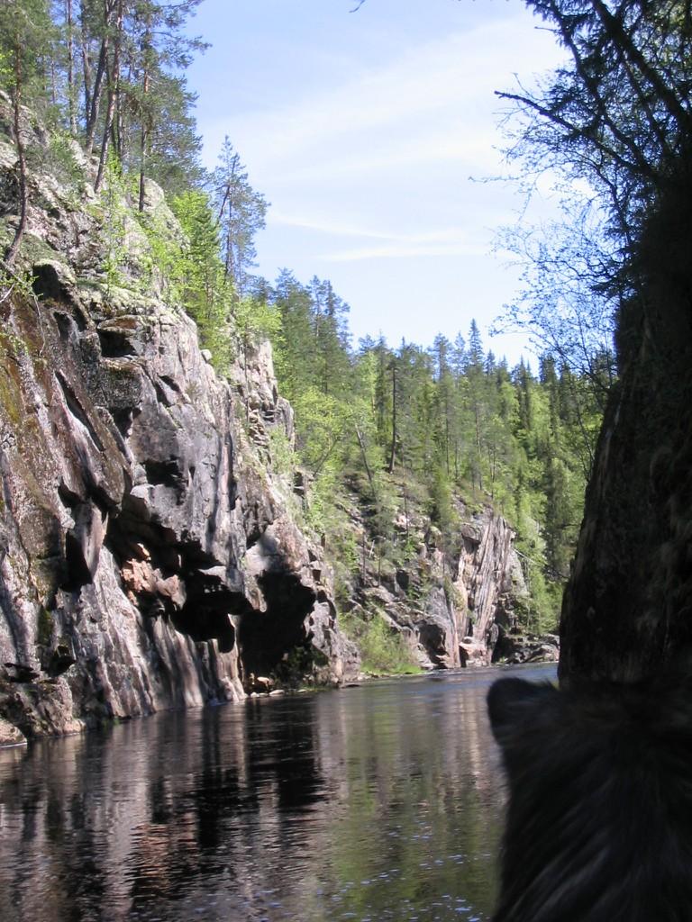 Auttijoen_kanjoni