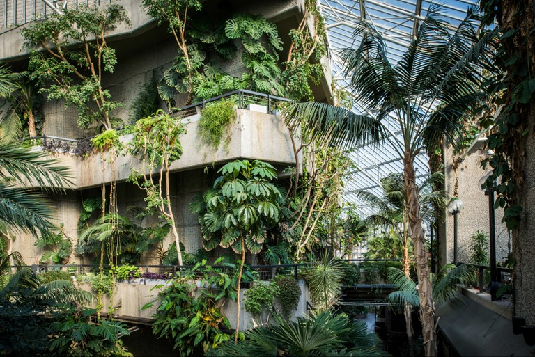 The concrete fly tower in Barbican Conservatory