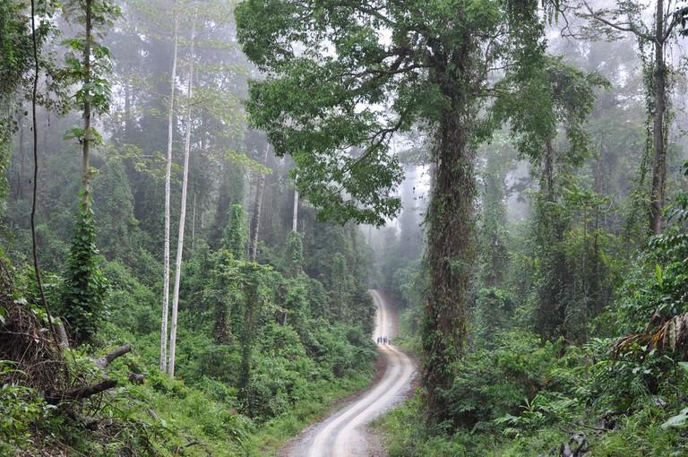 Danum Valley in Borneo, Malaysia