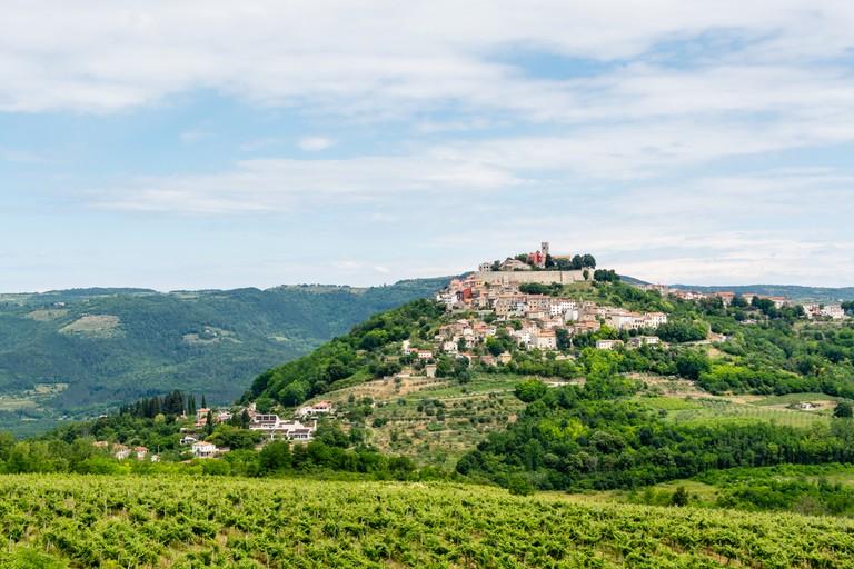 Rolling green hills of Motovun, Istria, Croatia