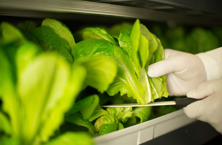 Vertical farming product