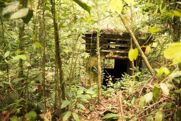 Ruins of Syonan Jinja found in the forest of MacRitchie Reservoir