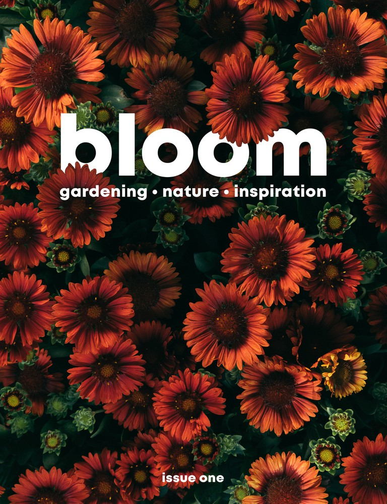 BloomMag_Issue1_COVER_front-min
