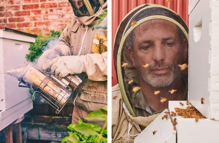 Andrew Coté comes from a long line of beekeepers